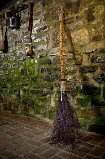 THE CARE AND FEEDING OF THE WITCH BROOM.