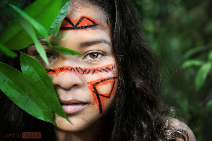 THE AMAZON STONES