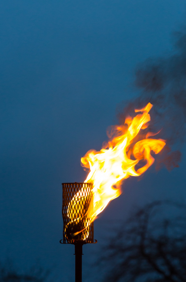 Torchbearers light up the Meadows by Neil Barton