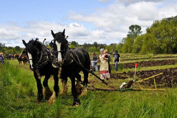 What is Organic Farming? IFOAM, Certification and Organic FarmingMethods.