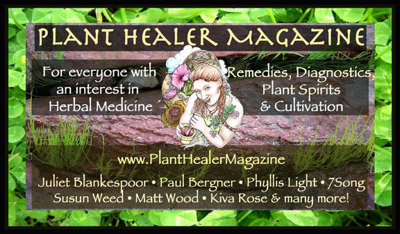 Plant-Healer-banner-color-825x4.75-72dpi