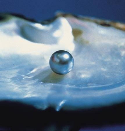 June Birthstone Pearl 5