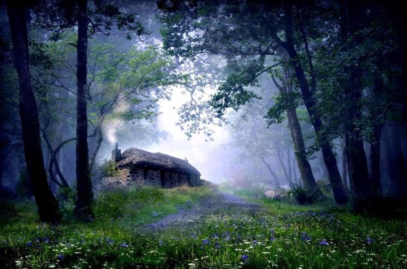 ENCHANTED WOODS ~ Yeats' The CelticTwilight