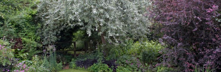 The Magickal Garden | Good Witches Homestead