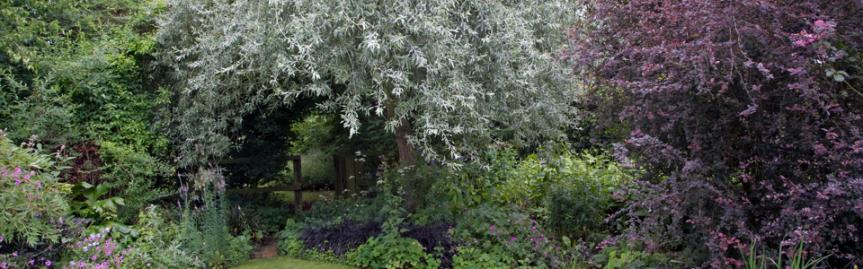 The Magickal Garden