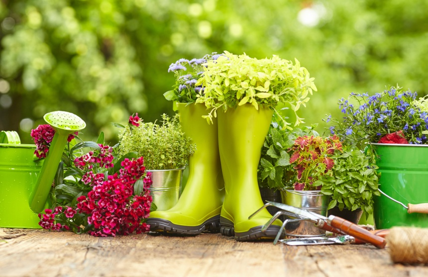 Outdoor gardening tools on old wood table