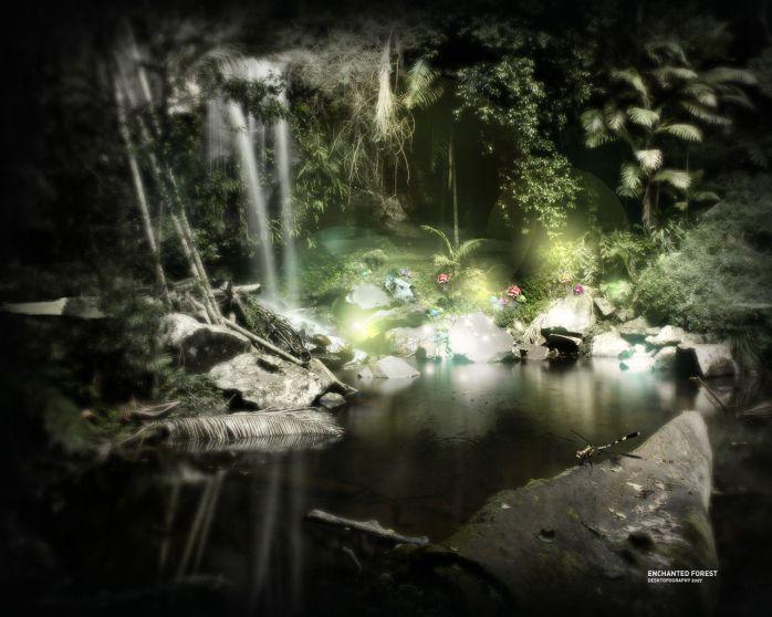 enchanted-forest-dark