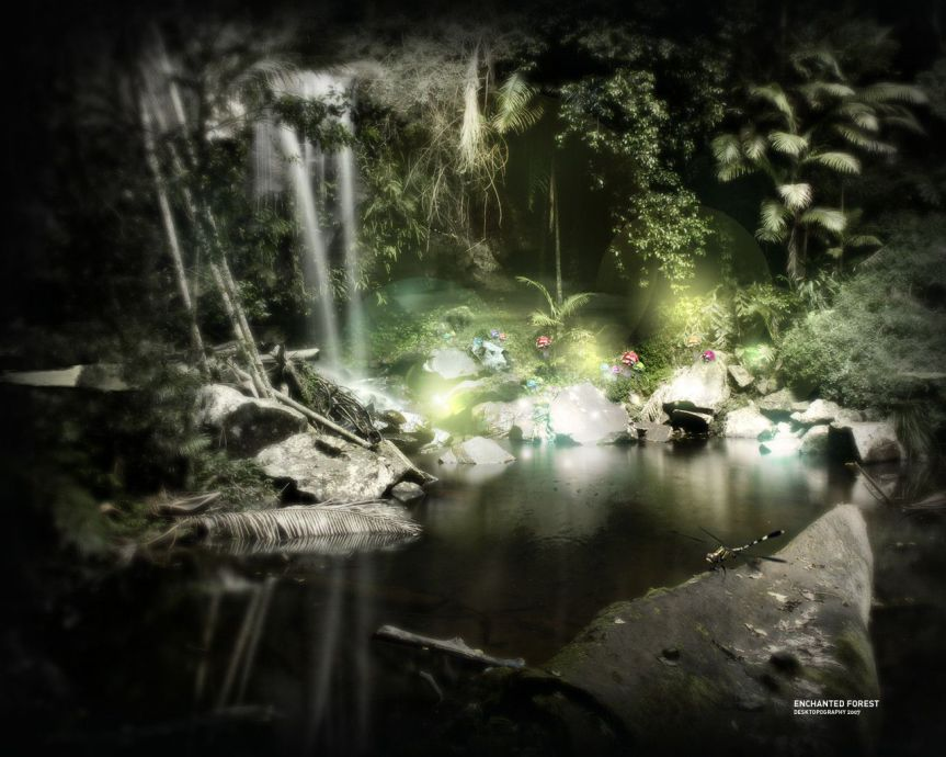 enchanted-forest-dark