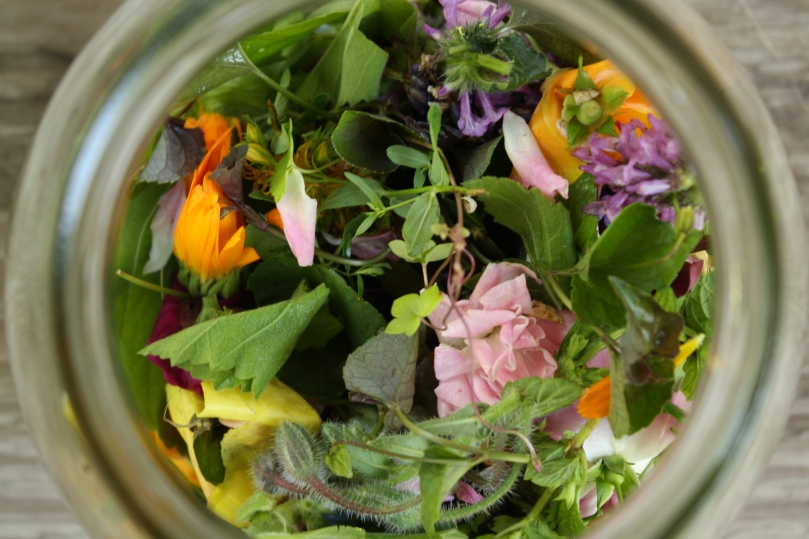 herbal-infusions