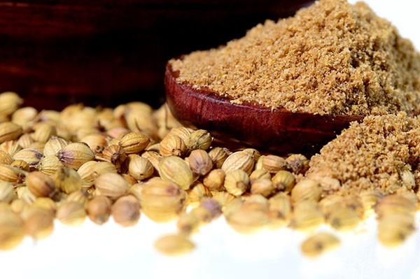 coriander-seeds-fresh-coriand