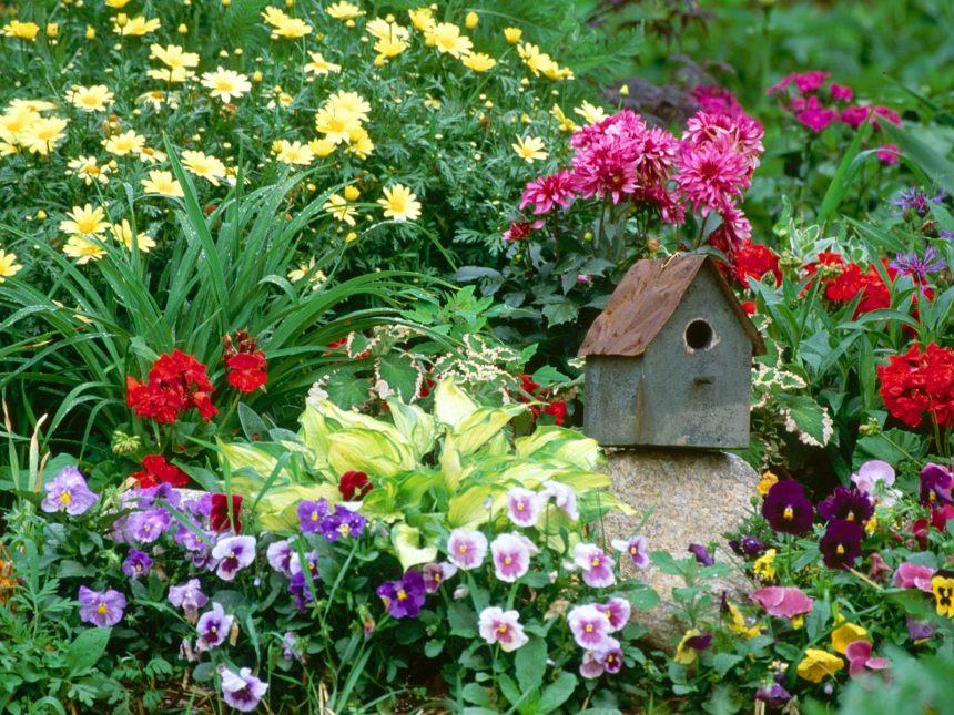 healing flower garden