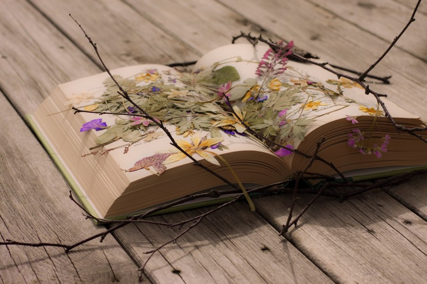 pressed flowers book