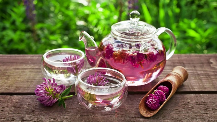 red-clover-tea-760x428