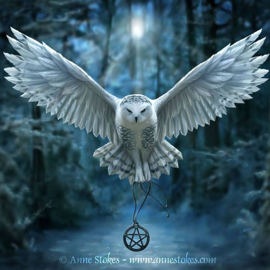 Magic of the Night ~ Spirit Owl