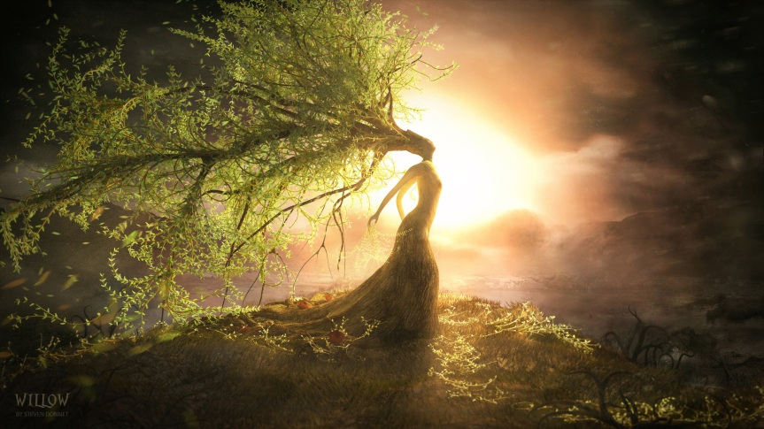 Willow {Celtic Moon Month}