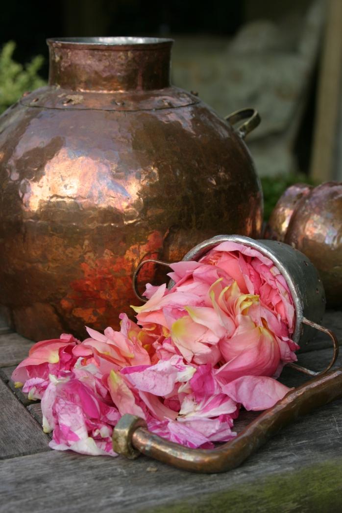 rose-flower-water-june-2011-005