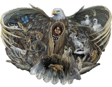 animal-spirit-guides-2
