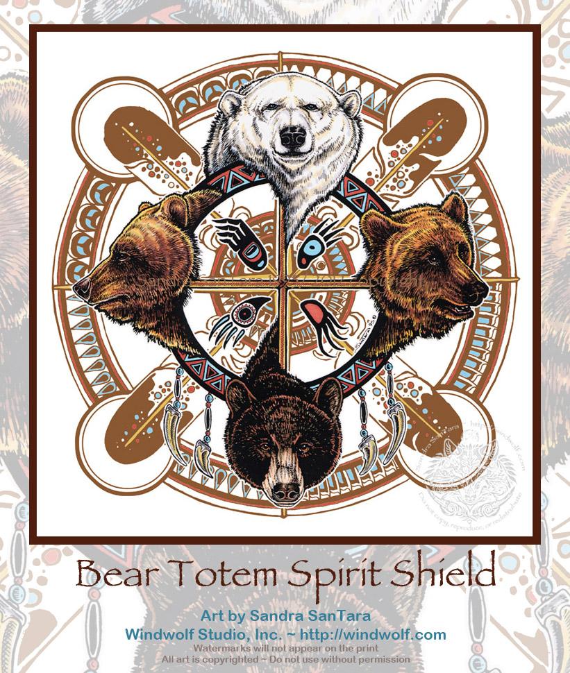 Animal Spirit and Medicine: BearMedicine