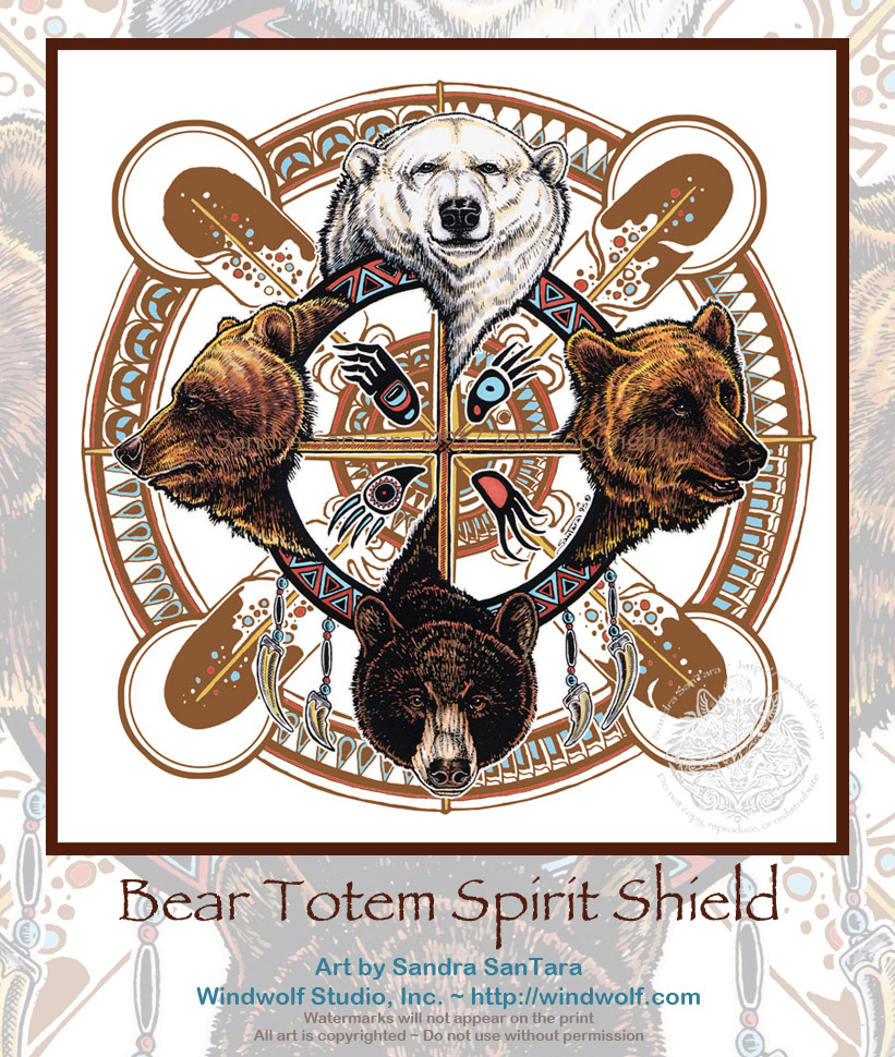 Animal Spirit and Medicine: Bear Medicine