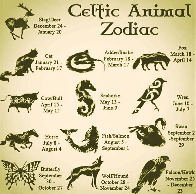 Celtic Animal Zodiac Good Witches Homestead