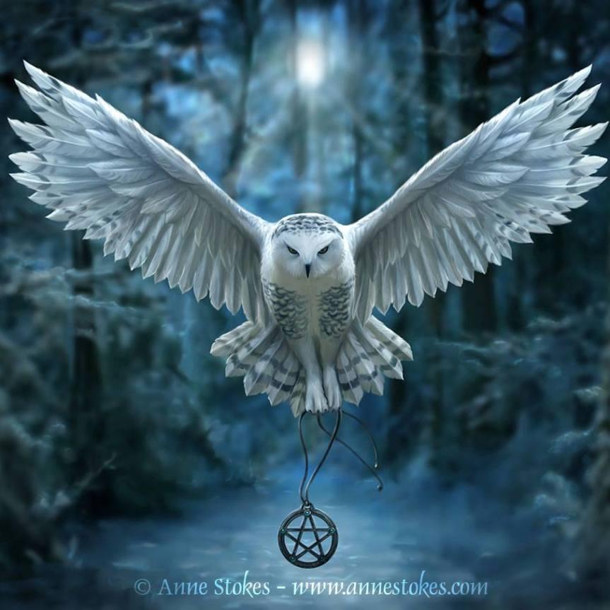 Animal Spirit and Medicine: Owl Medicine,Totem