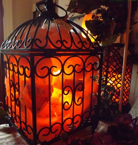 Are Himalayan Salt Lamps Safe For Parrots : WHAT IS A HIMALAYAN SALT LAMP? Good Witches Homestead