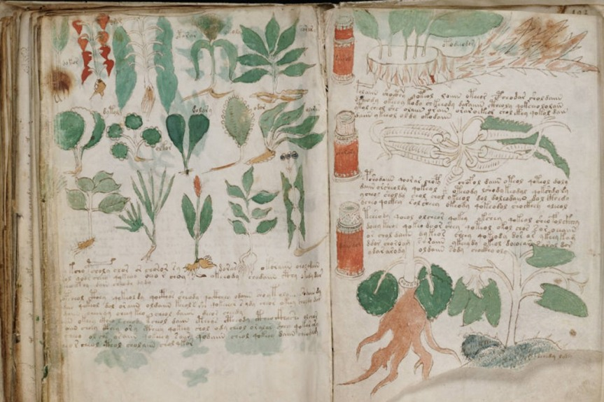 A Preliminary Analysis of the Botany, Zoology, and Mineralogy of the Voynich Manuscript