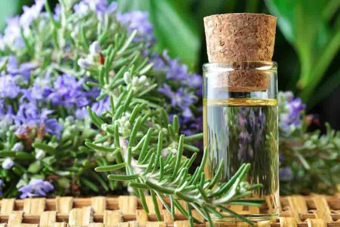 rosemary-essential-oil-bottle
