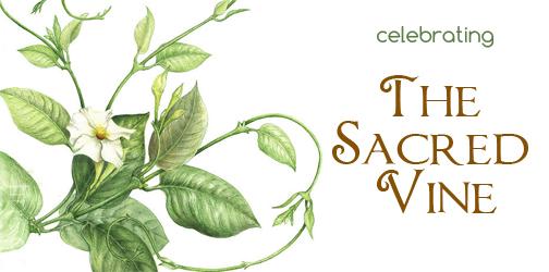 September, Celtic Vine