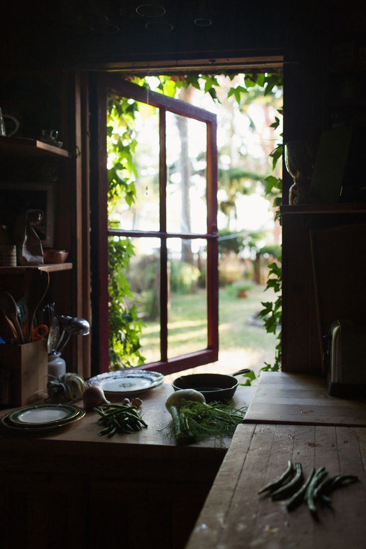 Our Winter Herbal Kitchen {part 1}