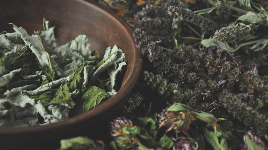 Herb Lore:  (Herbalism)