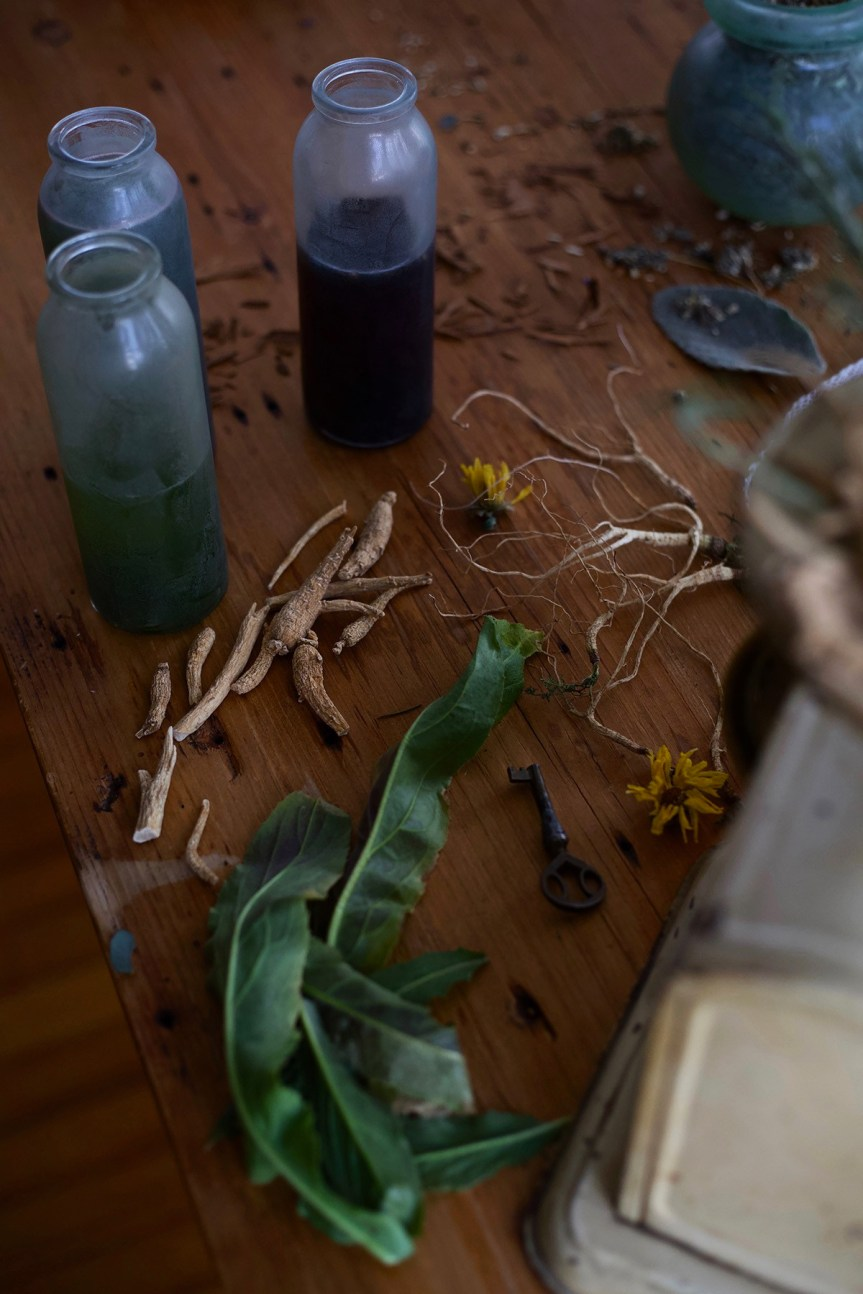 Herbalism: A History – How Herbalists Of The Past Paved The Way ForToday