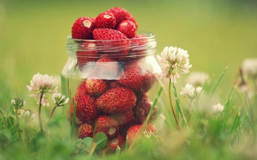 wild-strawberries-large