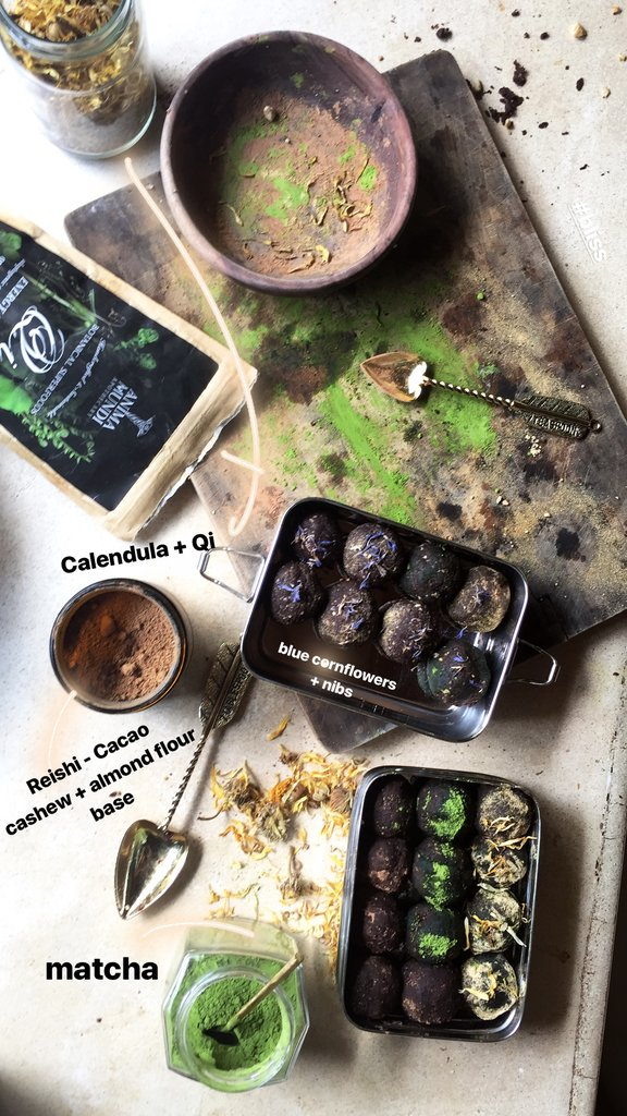 MUSHROOMS WITH CACAO : ADAPTOGENIC TREATS TO ELEVATE YOUR BODY & SOUL
