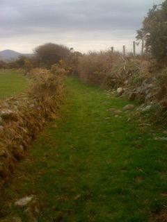 Ireland sabbatical