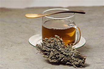 mugwort tea