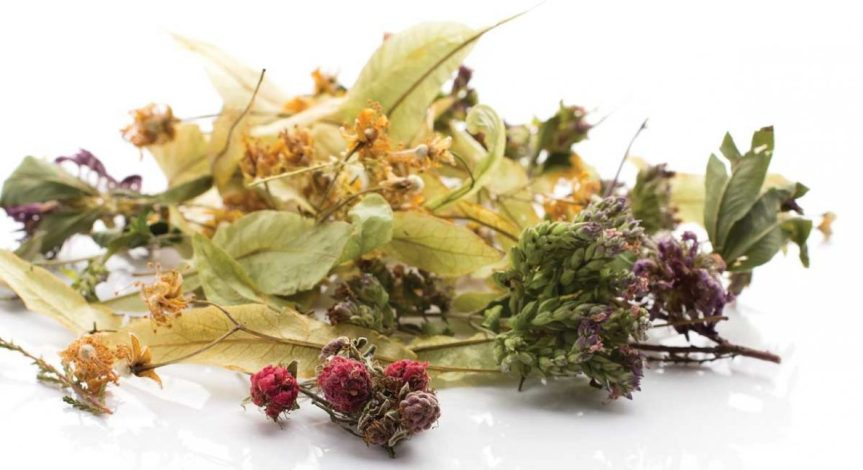 Tea Time: Medicinal Herbal Tea's