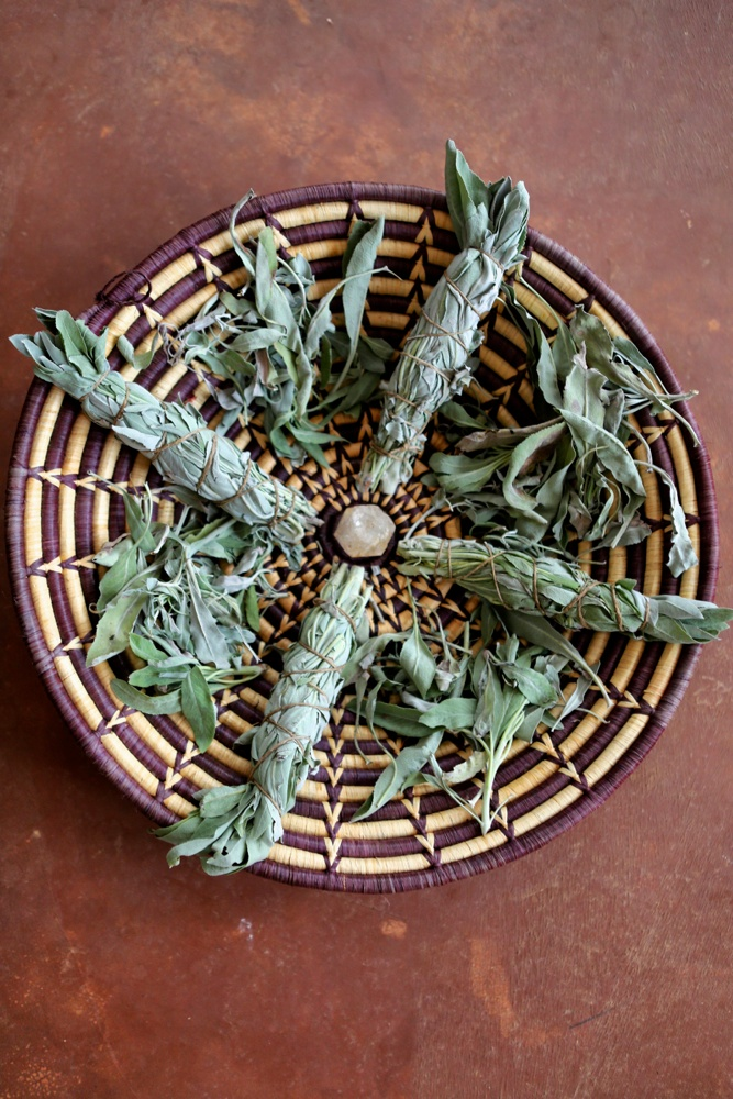 White-sage-cultivation-and-medicinal-uses