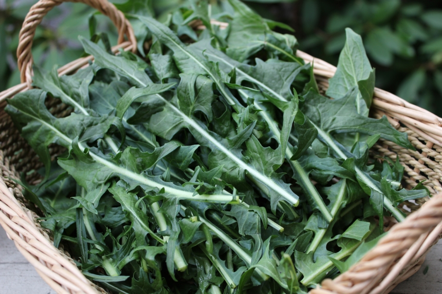 dand-greens1