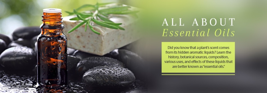 The Essence of Your Essential Oils