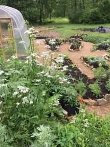 Part of my own Druid's Garden!
