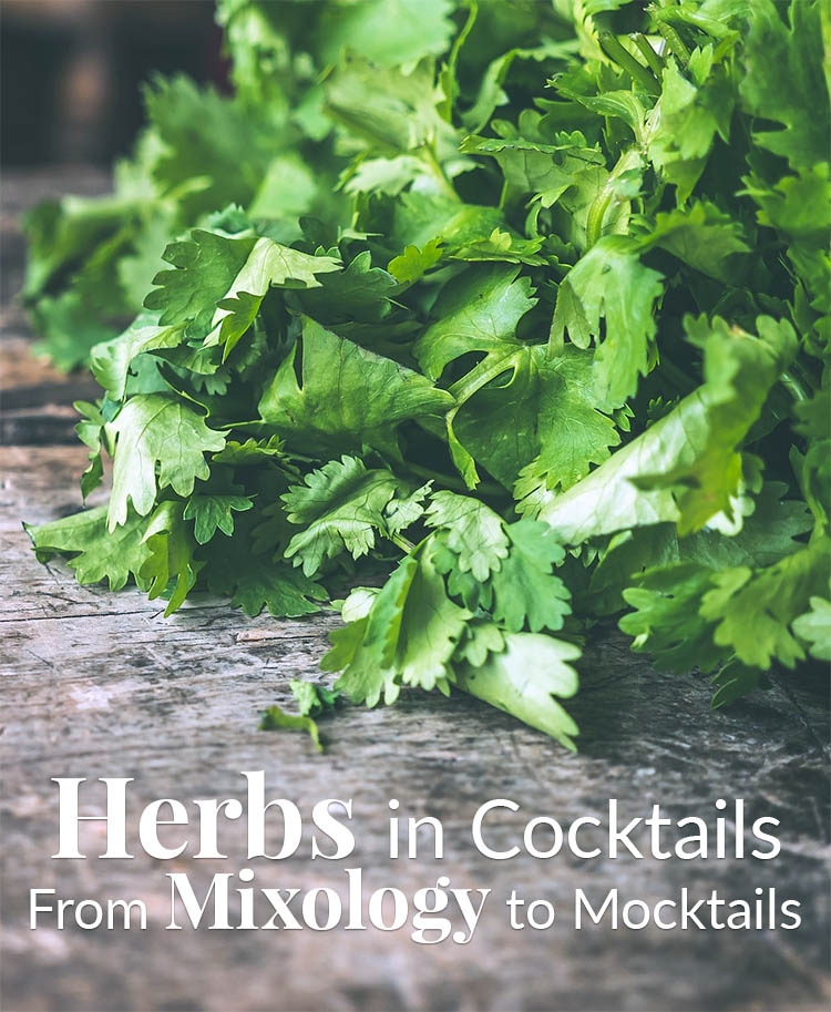 Herbs in Cocktail Drinks – From Mixology to Mocktails – The Herb Exchange
