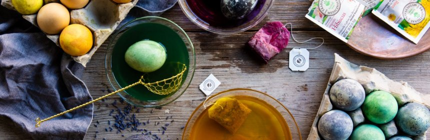 Holiday Egg Dyeing with Herbs – Traditional Medicinals | Good