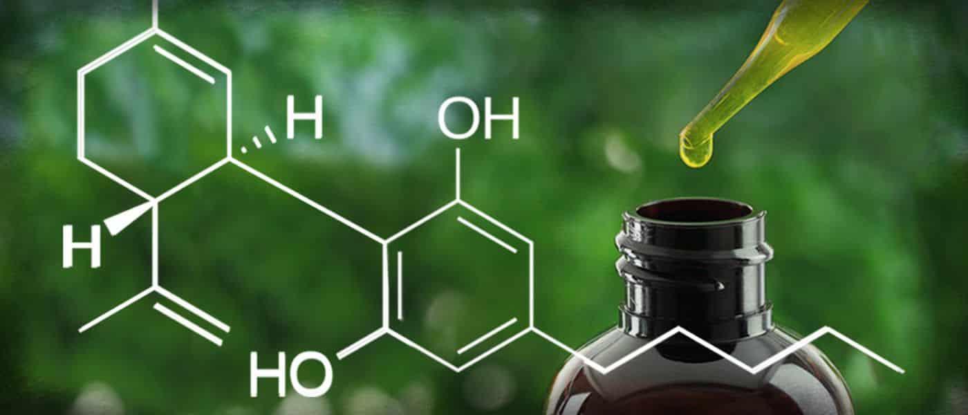 Plant Medicine: CBD | Good Witches Homestead