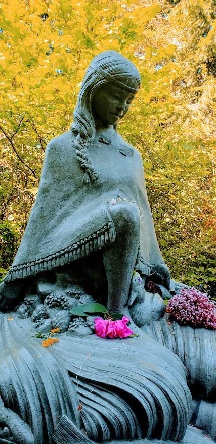 Wild Cakes for Camossung: A Prayer For Restoring The Garden – GatherVictoria