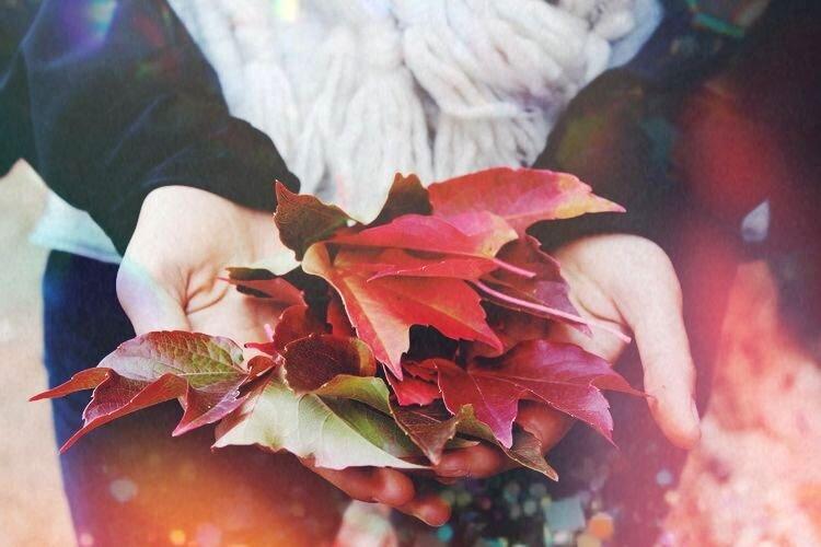 2019 Harvest Moon Mabon Ritual — Spirit de laLune