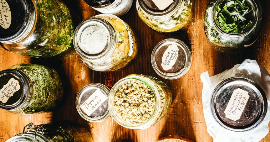 A New Year, A New You, Want To Become AnHerbalist?