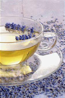 lavender tisane
