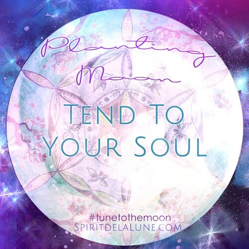 New Moon in Aries Lunar Report | Entering the Planting Moon Cycle — Spirit de la Lune