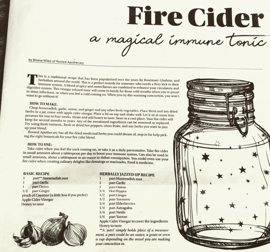 fire cider rooted apothecary